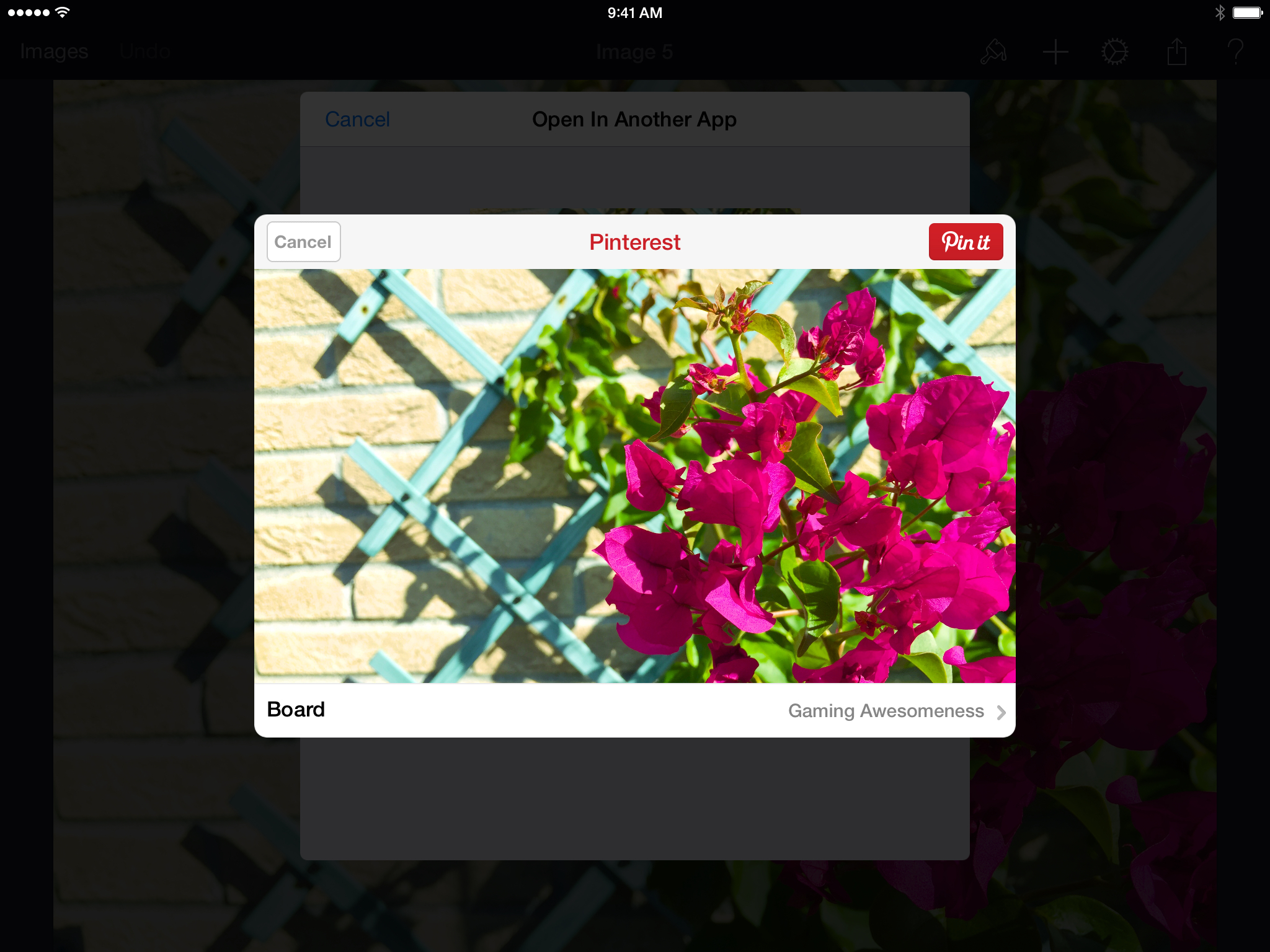 The Pinterest extension in Pixelmator for iPad.